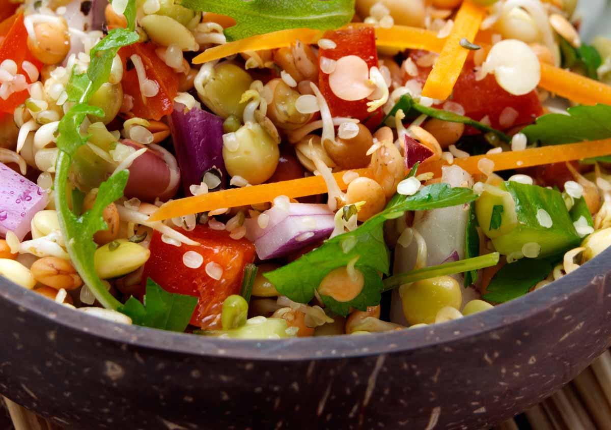 Sprouting Raw Salad - Vegan - Laura's Idea