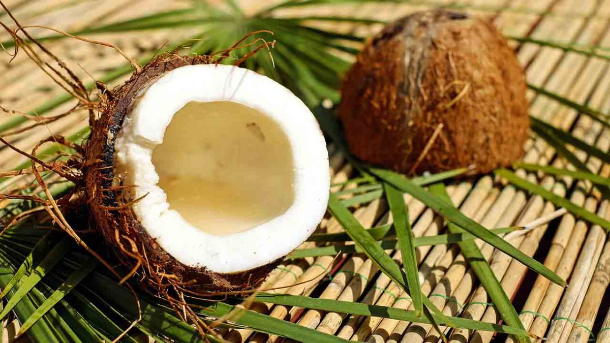 The health benefits and uses of coconuts - Laura's Idea